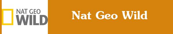 Смотреть канал Nat Geo Wild онлайн через торрент стрим