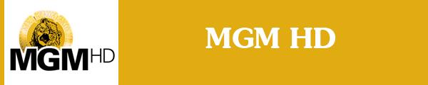 Смотреть канал MGM HD онлайн через торрент стрим